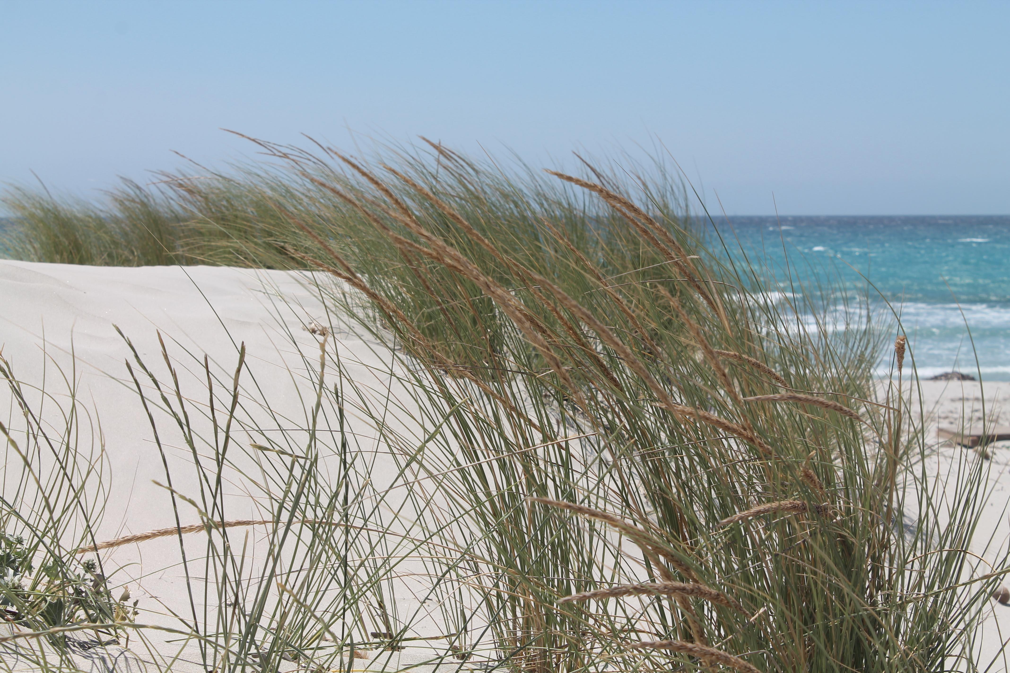 Is Arenas Biancas, dune e bagni senza fine