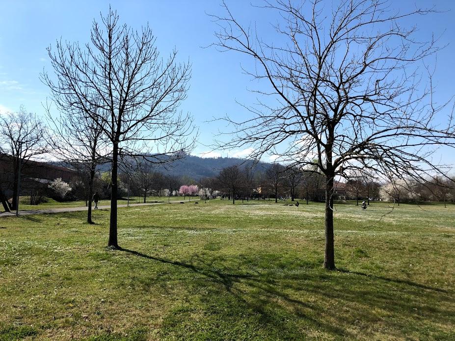 """Non tutto quel che si fa """"fuori"""" è outdoor education. Dialogo con Marta Arduino."""