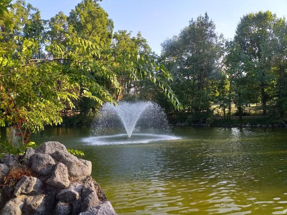 Il laghetto dei Giardini Margherita